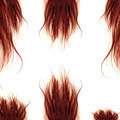 Brown Hairs isolated - PhotoDune Item for Sale