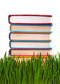 Books in the Grass - PhotoDune Item for Sale