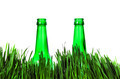 Two Bottles in the Grass - PhotoDune Item for Sale
