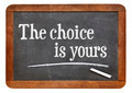 the choice is yours - PhotoDune Item for Sale