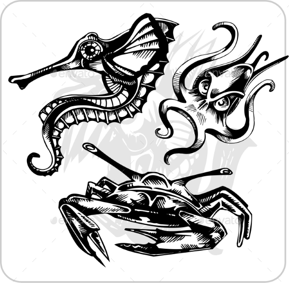 GraphicRiver Aggressive Marine Life Set 8847351