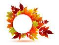 autumn design - PhotoDune Item for Sale