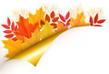 Autumn background with leaves. - PhotoDune Item for Sale