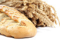 Bread and wheat ears on white background. - PhotoDune Item for Sale