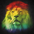 Colorful, artistic portrait of a lion on black background. - PhotoDune Item for Sale