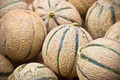 Ripe fresh melons pile in a market - PhotoDune Item for Sale