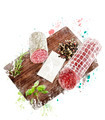Watercolor Image Of  Hard Salami,Herbs and Spices - PhotoDune Item for Sale