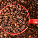 Red cup of coffee on coffee beans background - PhotoDune Item for Sale