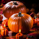 Pumpkins for Thanksgiving and  Halloween - PhotoDune Item for Sale