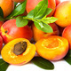 Apricot with leaves  - PhotoDune Item for Sale
