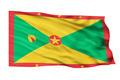 Flag of Guyana. - PhotoDune Item for Sale