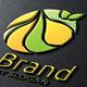 Eco Brand V.2 - GraphicRiver Item for Sale