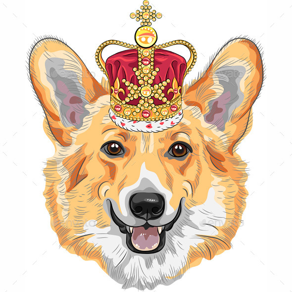 GraphicRiver Pembroke Welsh Corgi in Gold Crown 8884421