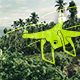 Flight Over Jungle - VideoHive Item for Sale