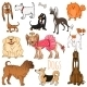 Vector Set of Funny Cartoon Dogs.Vector Illustration - GraphicRiver Item for Sale
