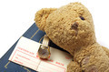 antique teddy bear and old watch - PhotoDune Item for Sale