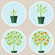 Vector Growth Concept - GraphicRiver Item for Sale