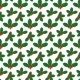 Pattern with Holly Berries - GraphicRiver Item for Sale