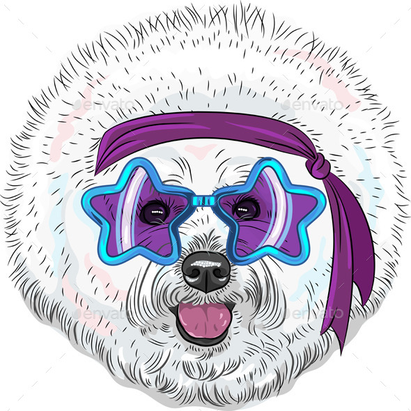 GraphicRiver cartoon hipster dog Bichon Star Disco 8892304