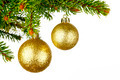 Christmas tree branch with ball - PhotoDune Item for Sale