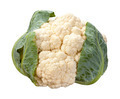 Cauliflower isolated - PhotoDune Item for Sale
