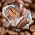 Falling roasted coffee beans with steam and milk - PhotoDune Item for Sale