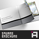 Minimal Series • Square Brochure Template - GraphicRiver Item for Sale