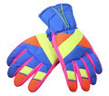 Ski Gloves - PhotoDune Item for Sale