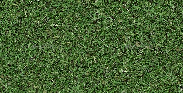 GraphicRiver Autumn Tileable Grass 8895489