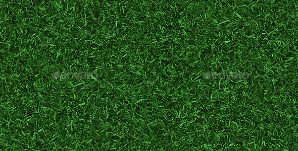 GraphicRiver Tileable Grass Texture 8895610