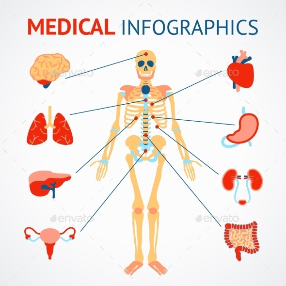 GraphicRiver Human Organs Infographic 8899078