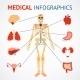Human Organs Infographic - GraphicRiver Item for Sale