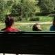 Girls Swings - VideoHive Item for Sale