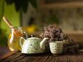 medicinal herbal hot tea - PhotoDune Item for Sale