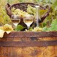 white wine and grape on wooden barrel - PhotoDune Item for Sale