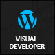 Visual Developer - Wordpress Custom CSS