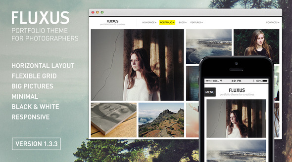 Fluxux, one very good portfolio wordpress theme