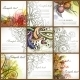 Set Of Floral Backgrounds - GraphicRiver Item for Sale