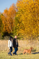 Couple walking dog in sunny autumn countryside - PhotoDune Item for Sale