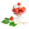 Strawberries and cream in bowl - PhotoDune Item for Sale