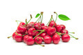 sweet cherries - PhotoDune Item for Sale
