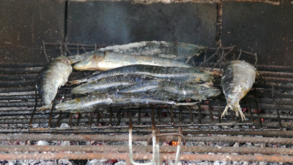 Fish Sardines Grilling on Grid 879