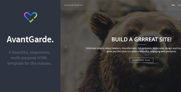 ThemeForest AvantGarde Responsive HTML Template 8923158