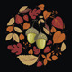 Vector Card with Autumn Leaves and Acorn - GraphicRiver Item for Sale