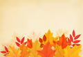Abstract autumn background with colorful leaves - PhotoDune Item for Sale