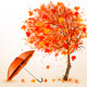 Autumn Background with Autumn Leaves - GraphicRiver Item for Sale