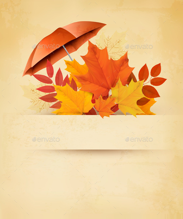 GraphicRiver Autumn Background with Autumn Leaves 8927501