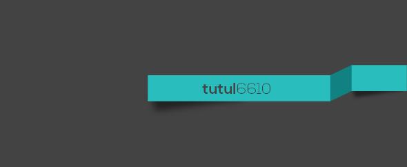 tutul6610
