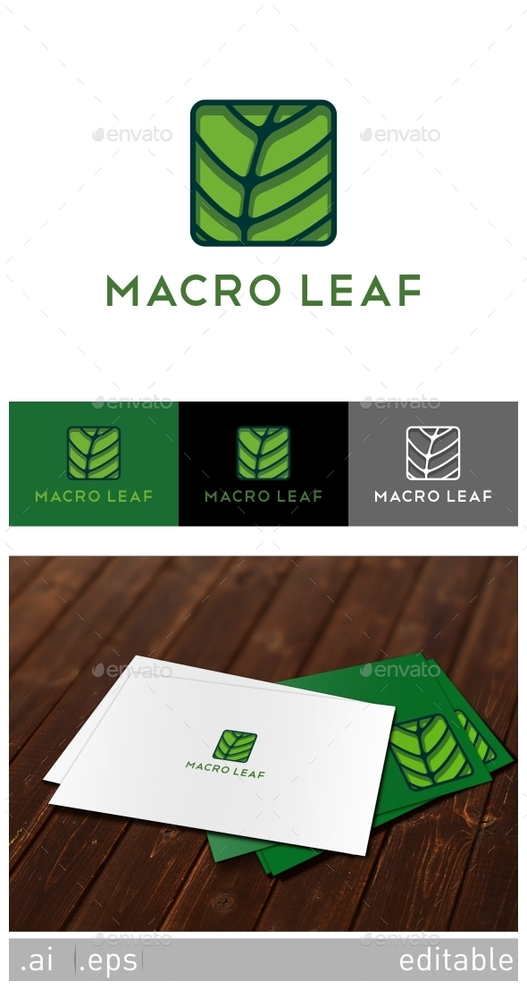 GraphicRiver Macro Leaf Logo Template 8929173