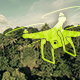 Flight Along Trees - VideoHive Item for Sale